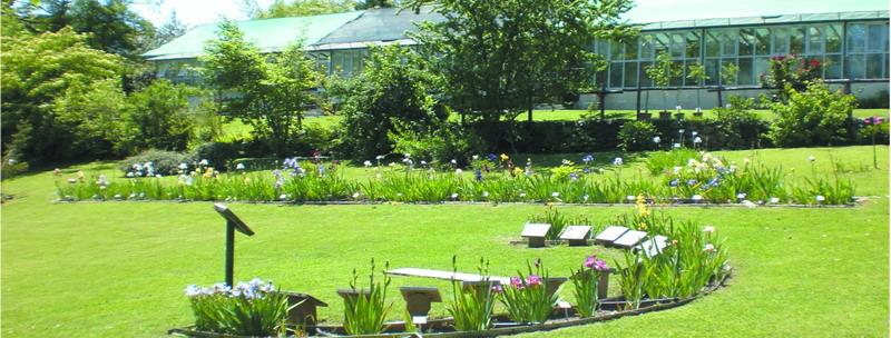 Riapre il Giardino Botanico Rea