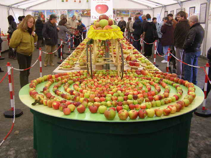 """Caprie, il tempo """"guasta"""" le mele. Organizzatori comunque soddisfatti"""