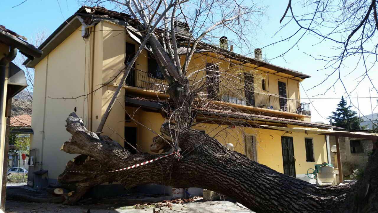 Una settimana di vento, tanti danni in Valsusa e Valsangone