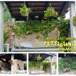 A1_PettigianiLucia_rid