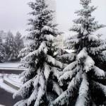 neve sestriere 2 ottobre (3)
