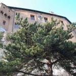 castello e pianta