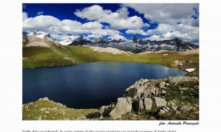 Bussoleno, mostra sulla biodiversità delle Alpi nella ex scuola dell'Argiassera