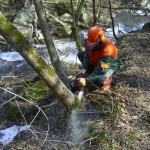 Fondi Ato, 2 milioni di euro per la manutenzione del territorio