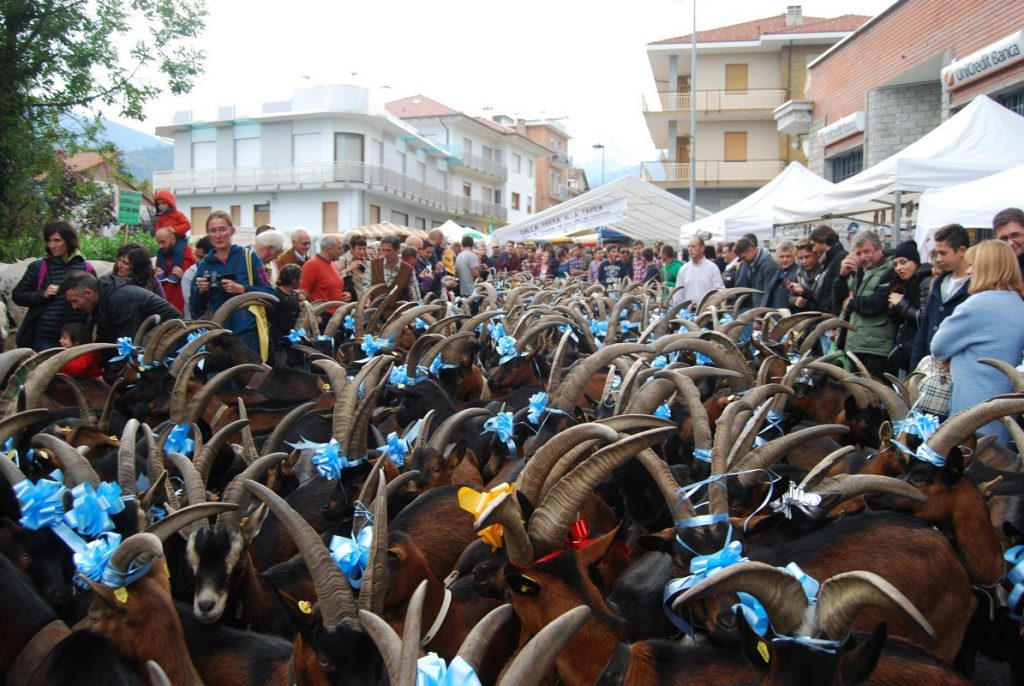 Un successo la Festa del Cevrin di Coazze