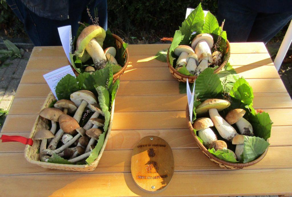 A Giaveno Fungo in Festa e Fiera del Libro