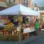Chiusa San Michele_meliga 02