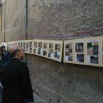 Chiusa San Michele_meliga 13