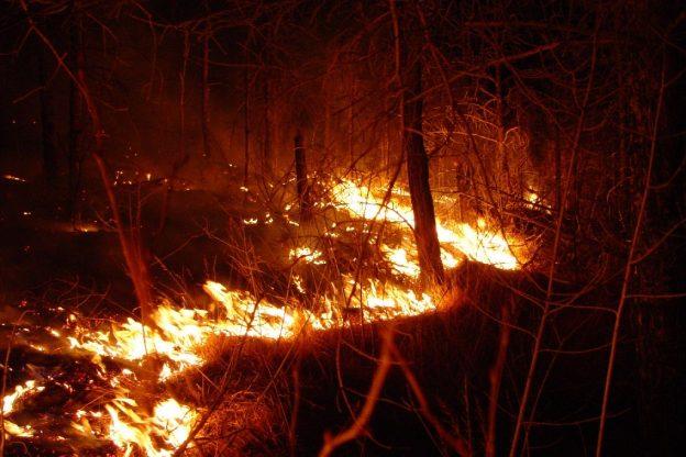 Quattrocentomila euro per la lotta agli incendi boschivi in Piemonte