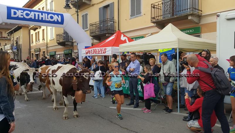 Condove, migliaia di visitatori in marcia su … Toma