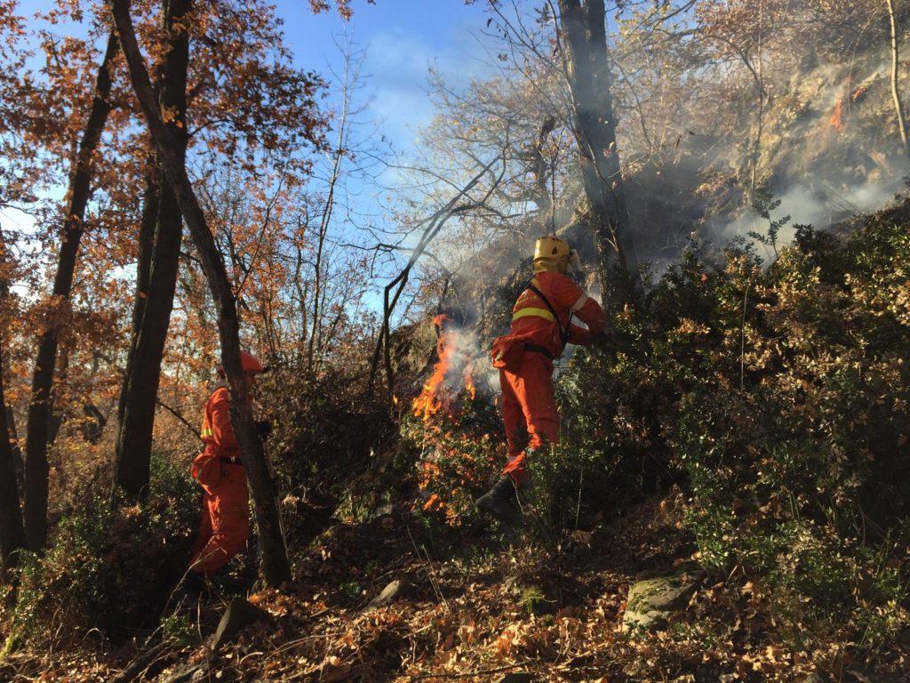 Ancora incendi in Valle di Susa, colpiti i boschi di Villar Dora, Caprie, Rubiana