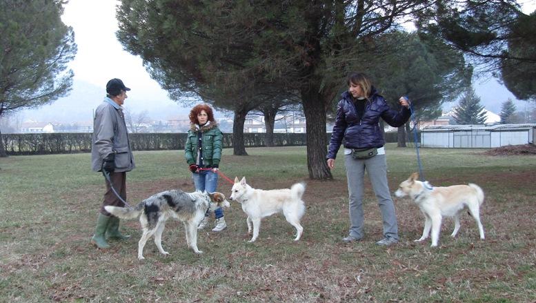 """Quattro salti a """"La Cuccia"""" di Sangano per scoprire come funziona un canile"""