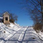 """CiaspolarFocchiardo"": domenica sulla neve"