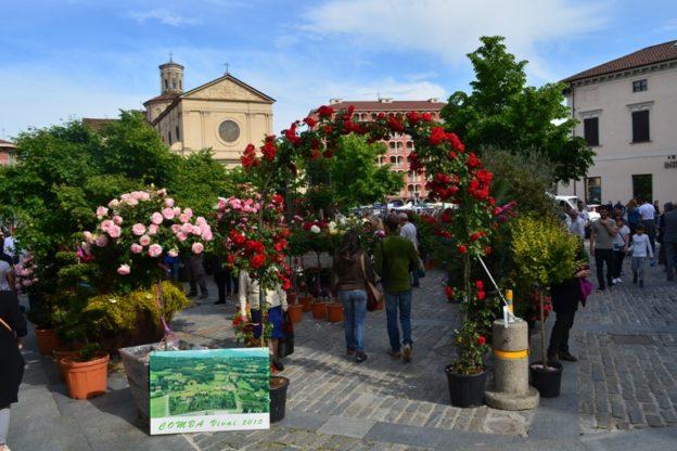 A Giaveno, domenica 20, c'è Maggionatura