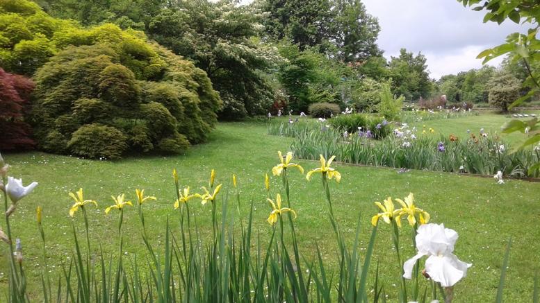 Trana, visita speciale al Giardino Botanico Rea, domenica 3 giugno