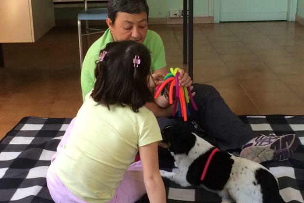 Cos'è la Pet Therapy? Facciamo un po' di chiarezza con il veterinario giavenese Mauro Moretta