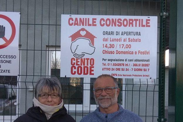"""I volontari del canile valsusino """"Cento Code"""" raccontano le loro storie"""