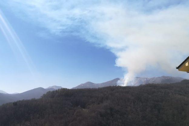 Giaveno, incendio boschivo a monte di borgata Roccette