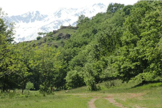 'Na Duminica a Pian Domini con Alpini, FIDAS e non solo