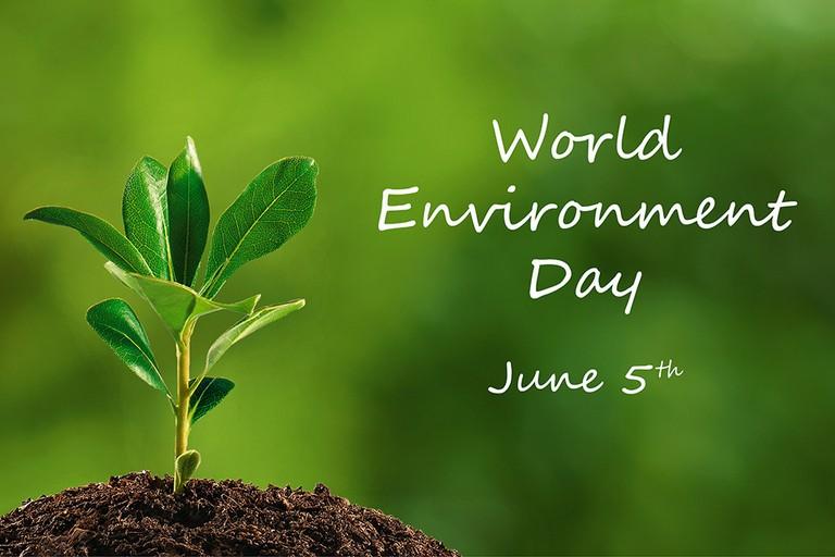 La Giornata Mondiale per l'Ambiente in Val di Susa