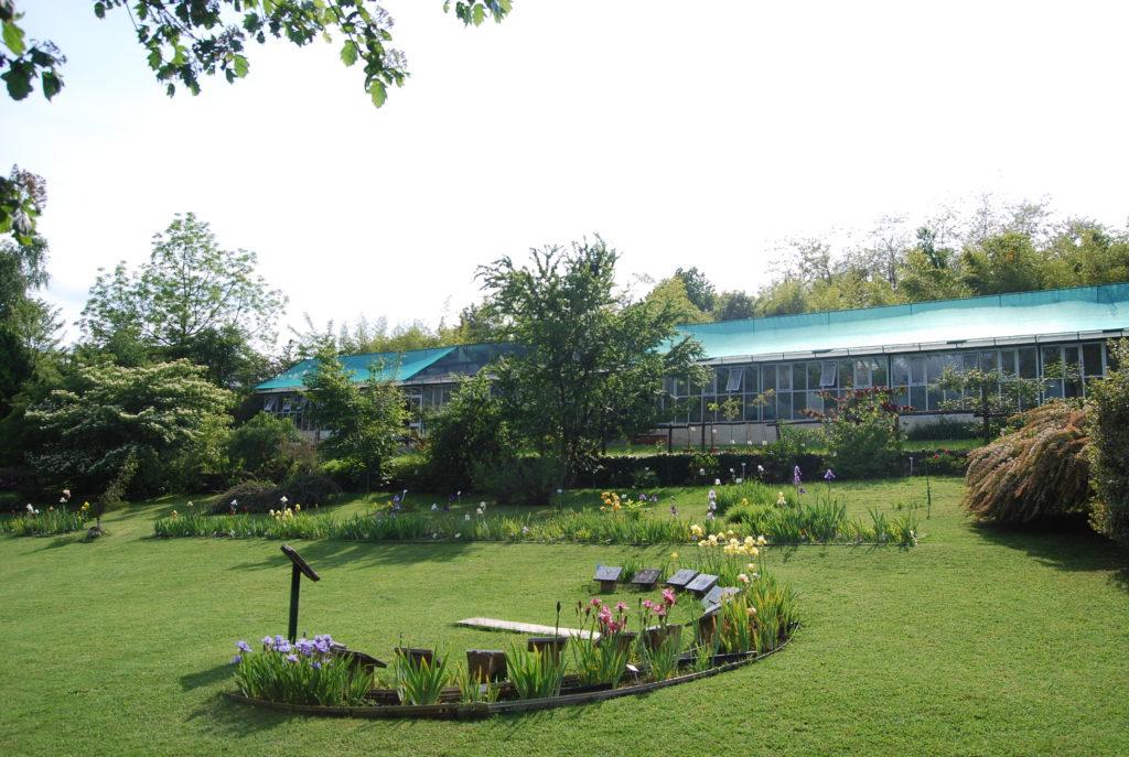 Trana, la Regione Piemonte torna a investire nel Giardino Botanico Rea