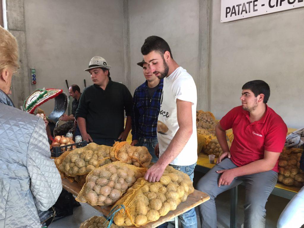Novalesa, per la Fiera della patata girano le rotoballe