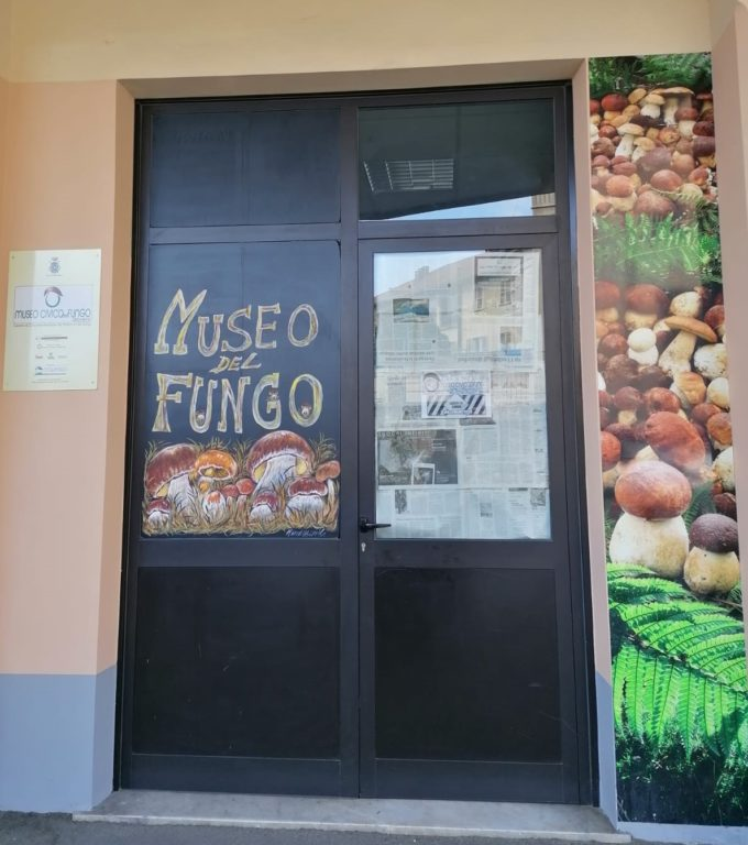 A Giaveno, questo fine settimana, ci sono Fiera e Festa del Fungo