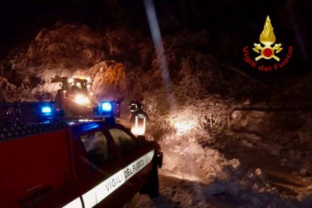 Alberi caduti a causa della neve. Intervengono i Vigili del Fuoco – Foto