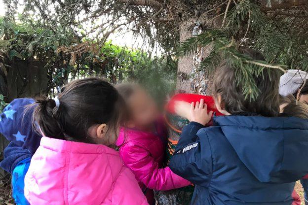 """Giaveno, i bimbi dell'asilo """"Ventre"""" festeggiano la Giornata degli Alberi"""