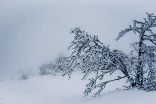 Due escursionisti bloccati dalla neve a 2200 metri di quota in Alta Val di Susa