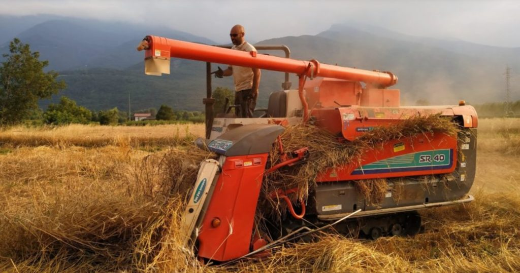 Il Mulino Valsusa lancia un appello ai coltivatori della Valle