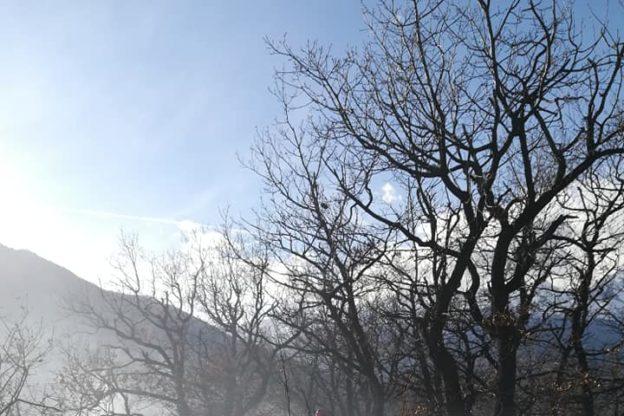 Ennesimo incendio boschivo in Val di Susa. Intervengono Aib e Vigili del Fuoco