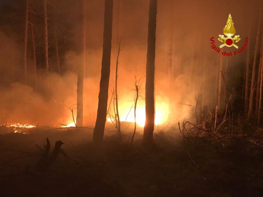 Vasto incendio boschivo ad Almese lungo la tagliafuoco di Rivera