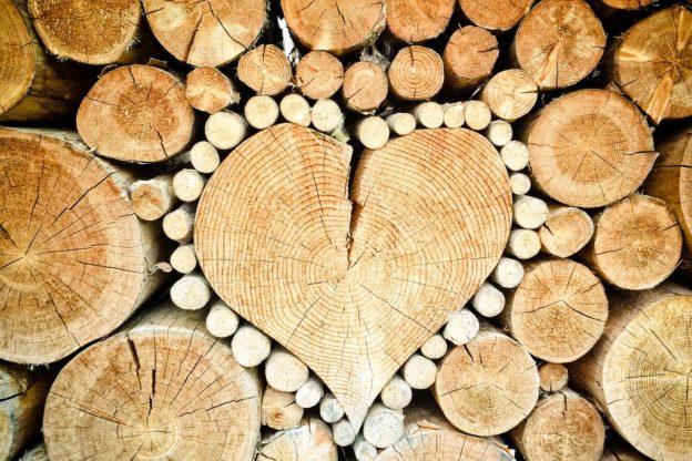 """""""Riscaldarsi con il legno"""": incontro informativo giovedì 27 febbraio a S.Antonino"""