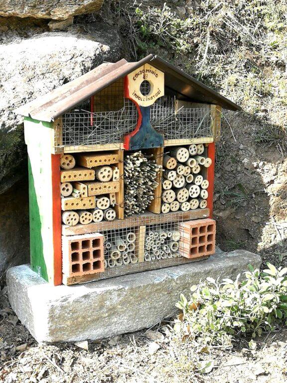 San Giorio, un luogo amato dagli insetti impollinatori