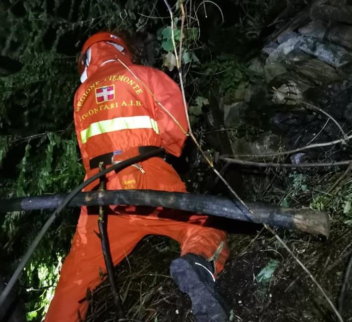 Incendio boschivo in Val di Susa: danni contenuti