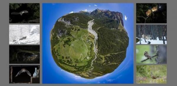 Mostra fotografica al Parco Naturale del Gran Bosco di Salbertrand