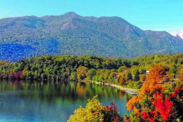 """Lago Grande di Avigliana: al via i lavori per """"rinaturalizzare"""" le sponde"""