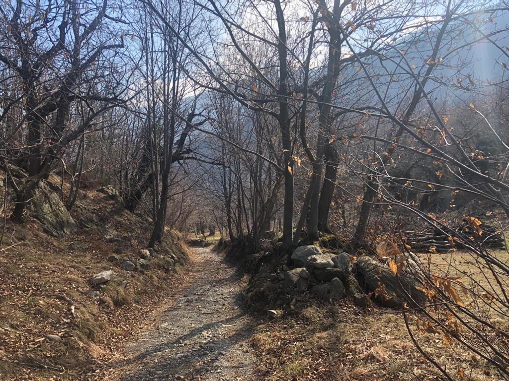 Nuove varianti sulla Via Francigena in Val di Susa per un percorso più sicuro