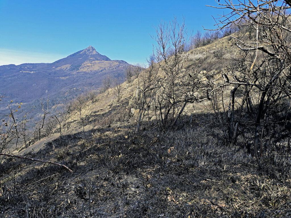 Bilancio dell'incendio sulla Seja tra Villar Dora e Caprie