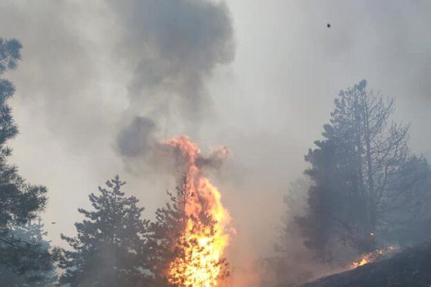 Il Musinè continua a bruciare: situazione complessa, fiamme spente non prima di domattina