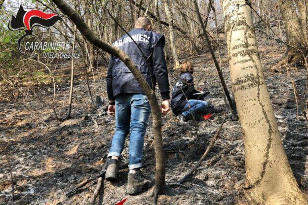 Valgioie, condannato a due anni un volontario Aib che appiccava incendi