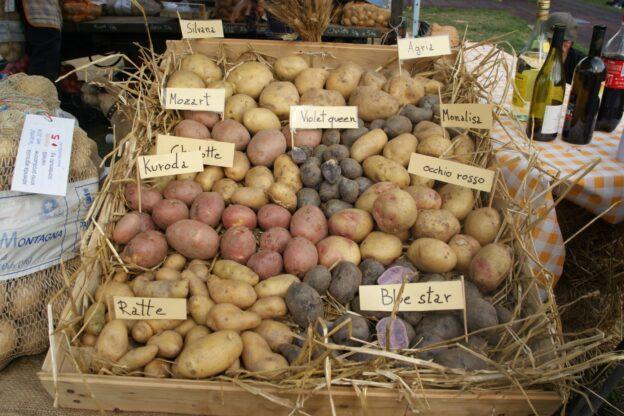 Il Comune di Sauze d'Oulx sostiene le coltivazioni tipiche locali