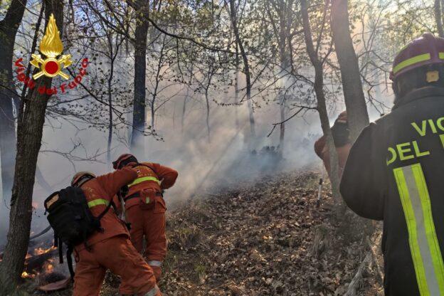 Incendio boschivo in Bassa Val di Susa: intervento in corso