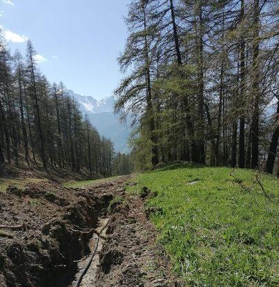 Sauze d'Oulx, Il pascolo di frazione Tachier avrà il suo acquedotto