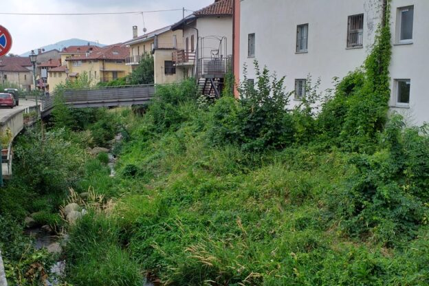 """Giaveno è una città un po' troppo """"green"""" nei greti dei torrenti"""