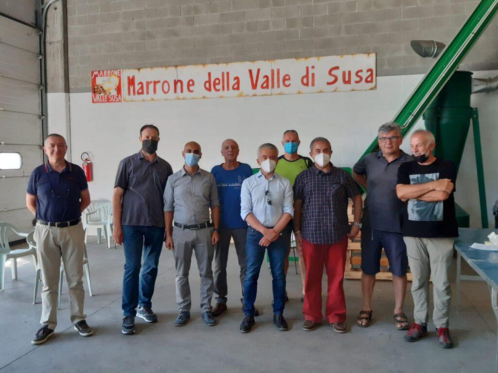 L'assessore regionale Protopapa in Valsusa per i castagni e gli ulivi