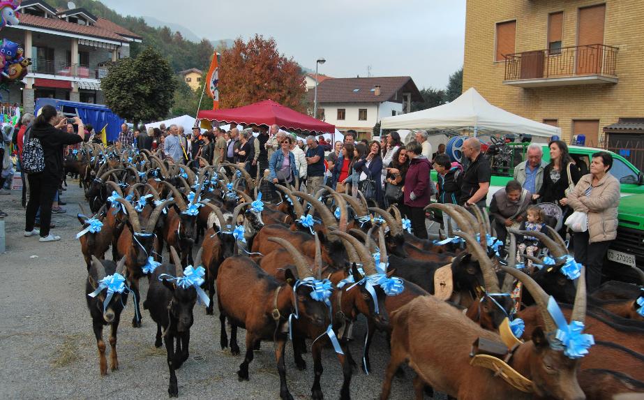 Domenica 17 ottobre torna la Festa del Cevrin di Coazze